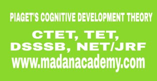 Piaget's Cognitive Development Theory-CTET-SUPER TET